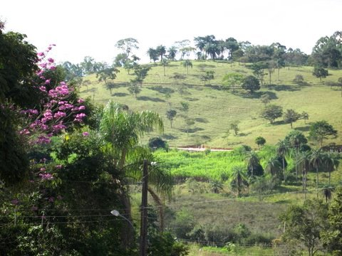 Blog Brazil scenery IMG_0866