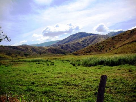 Blog Brazil pastoral DSC00021